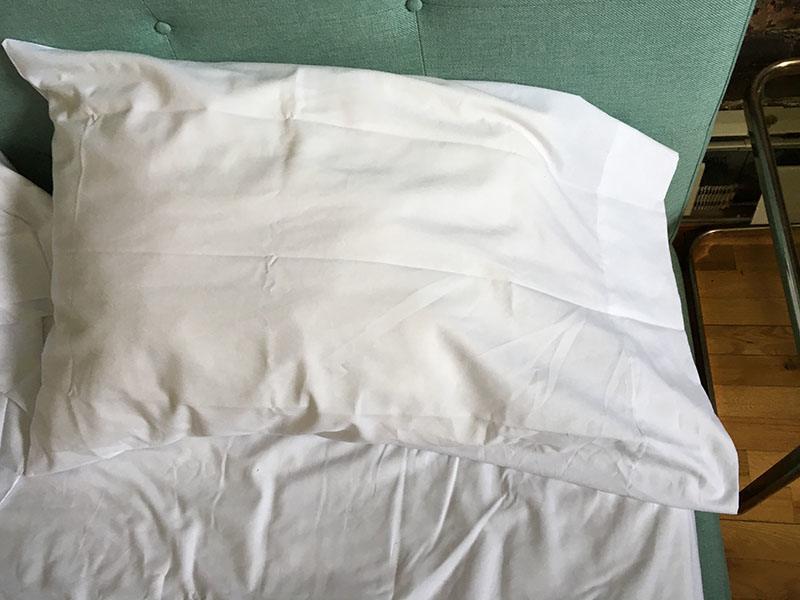 Authenticity 50 Pillow Case Fit