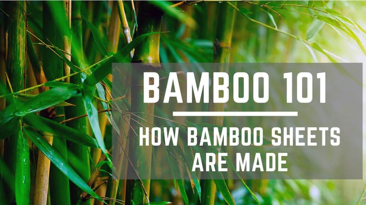 Bamboo 101 How Bamboo Sheets Are Made