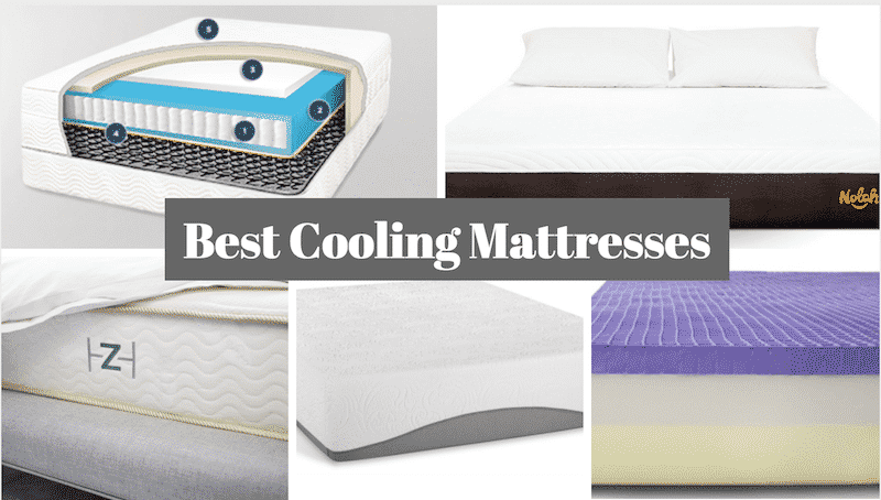 At Has Directly Addressed This Issue With The Construction Of Mattress Otherwise You Might Be Risk Getting A That Sleeps Hot