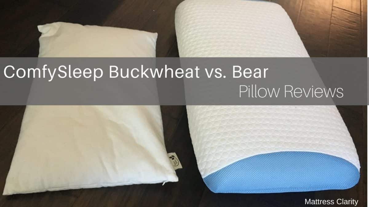 Pillow Reviews Comfysleep Buckwheat Vs Bear Mattress