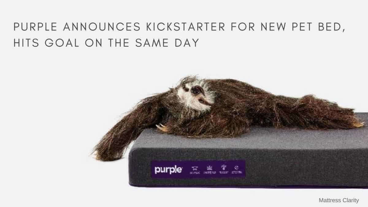 Purple Announces Kickstarter For New Pet Bed Hits Goal On