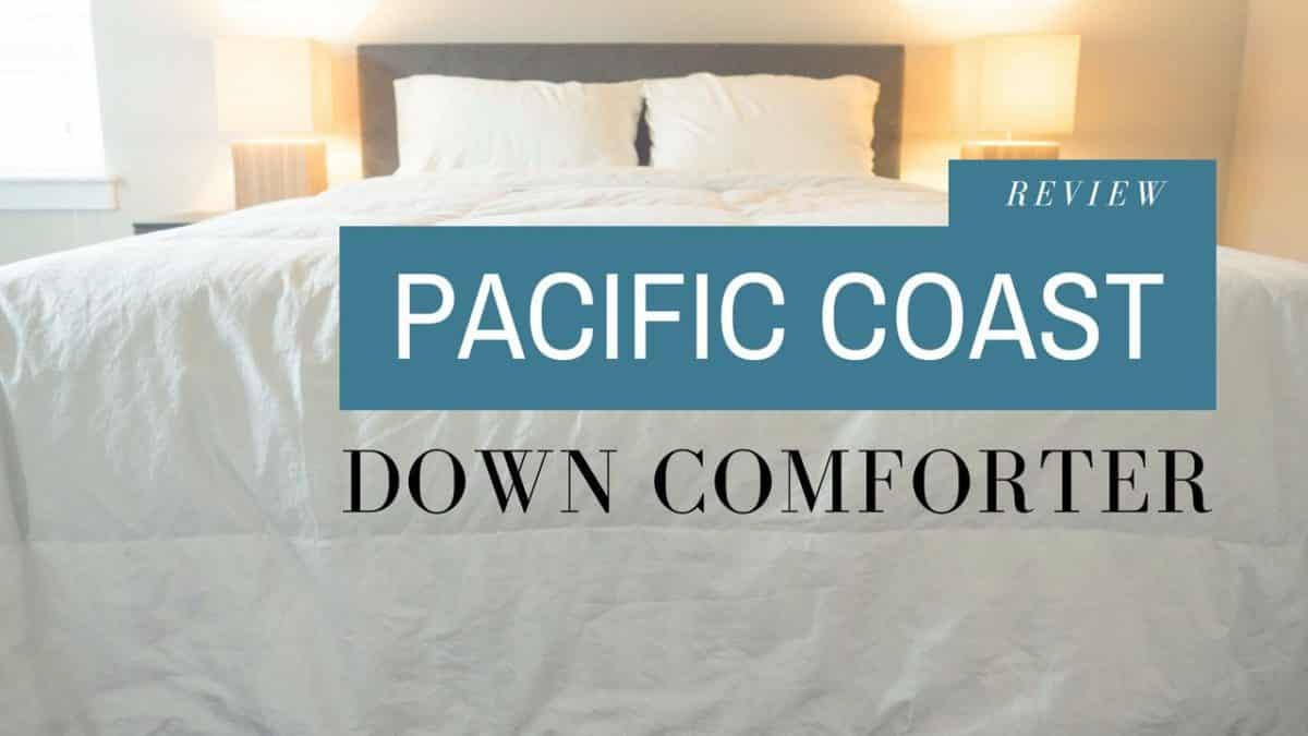 Pacific Coast Down Comforter Review Mattress Clarity