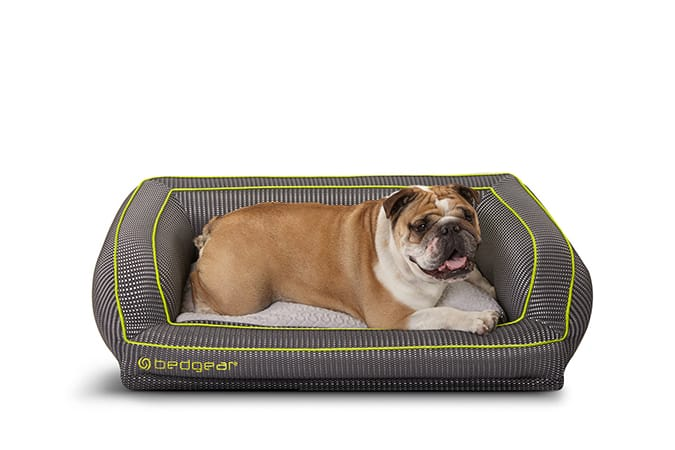 Bedgear Debuts Performance Pet Bed