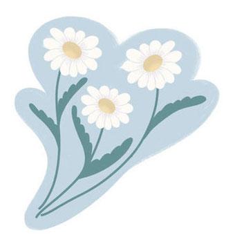 Chamomile Flower For Sleep