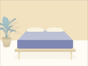 Mattress Clarity Bed