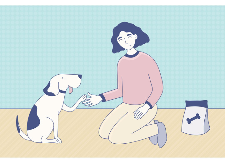 playing with your pet engages them