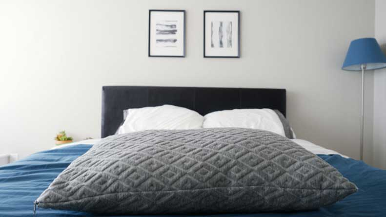 Eli Amp Elm Pillow Review