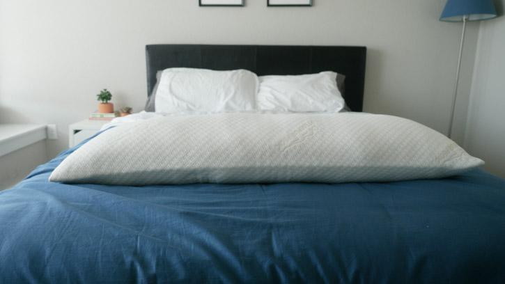 TEMPUR-Pedic Body Pillow Review