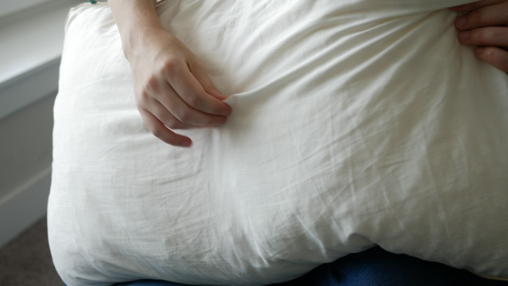 Birch Pillow Is Spot Clean Only