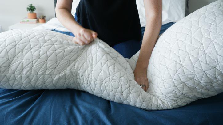 Coop Home Goods Body Pillow Feel